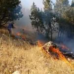 Türkische Armee brennt Wälder in Kurdistan nieder – Aufruf für eine internationale Delegation