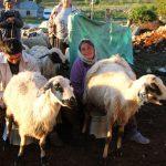Dêrsim: Zugang zu den Hochalmen verboten